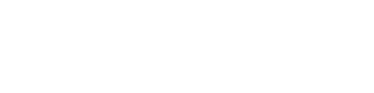 Agence digitale, SS2I
